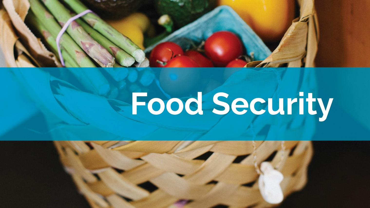 Food Security
