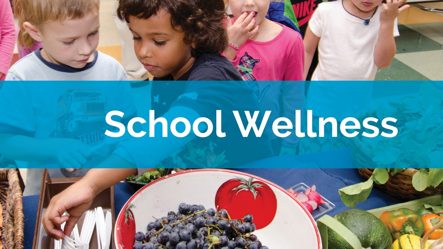School Wellness