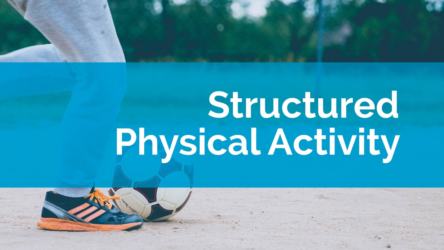 Structured Physical Activity<